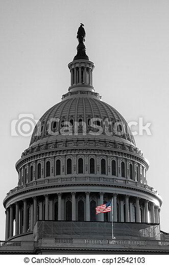 國家, 州議會大廈, 團結, 美國 - csp12542103