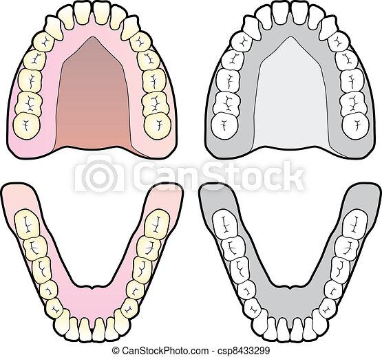 圖表, 牙齒 - csp8433299