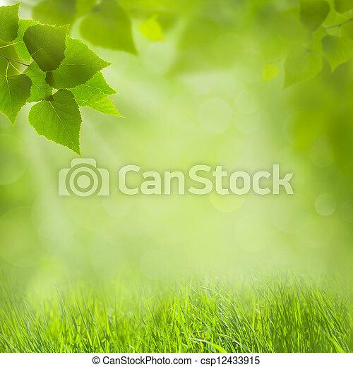 夏天, 設計, 自然, 你, 背景 - csp12433915