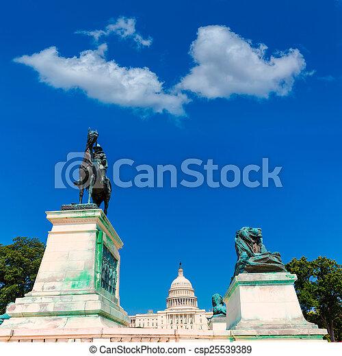 建築物, 州議會大廈, 國會, 華盛頓特區, 陽光 - csp25539389