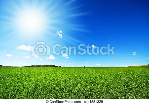 明亮的藍色, 新鮮, 天空, 草, 綠色 - csp1581329