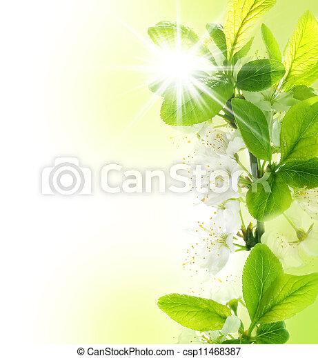 春天, 邊框 - csp11468387