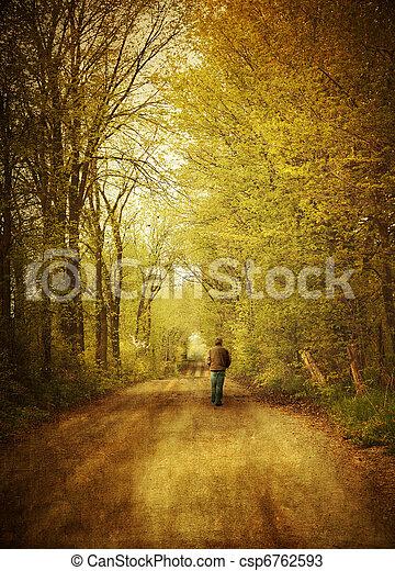 步行, 孤獨, 路, 人, 國家 - csp6762593