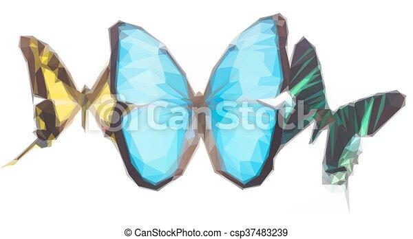 熱帶, 蝴蝶, 行 - csp37483239