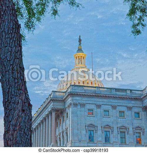 美國美國國會大廈, 華盛頓, 建築物 - csp39918193