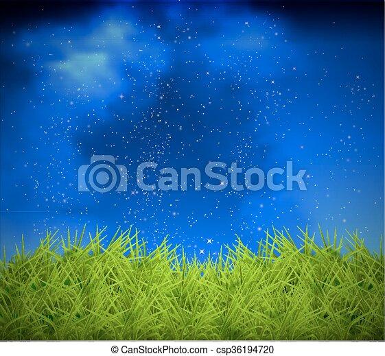 草, 天空, 背景, 夜晚 - csp36194720