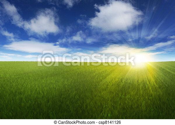 陽光普照, 在上方, 天空, 長滿草, 領域 - csp8141126