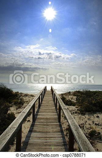 boardwalk, 陽光 - csp0788071