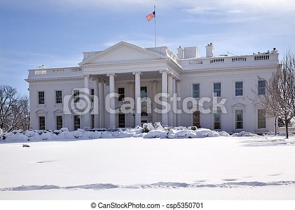 dc, 賓夕法尼亞, 房子, ave, 雪, 旗, 華盛頓, 白色 - csp5350701