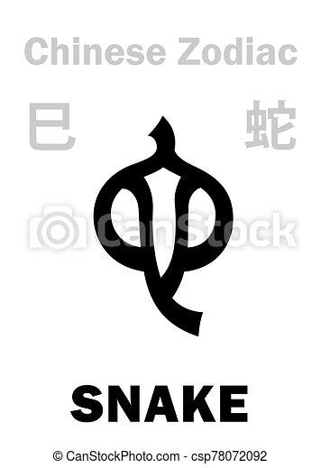 (sign, zodiac), 漢語, 蛇, astrology: - csp78072092